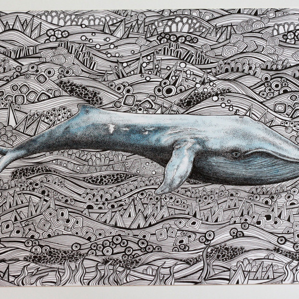whale1_MG_8009