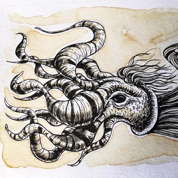 octopus_JJosefsen